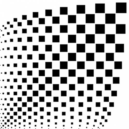 cub02.jpg