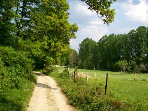 Pontarmé_(60),_chemin_rural_n°_28_dit_des_Loges_(chemin_de_Montgrésin).jpg